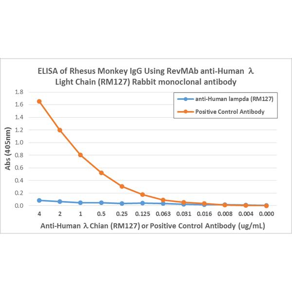 High Quality Anti Human Lambda Light Chain Rabbit Monoclonal Antibody, Clone RM127 |  RevMAb Home Design Ideas